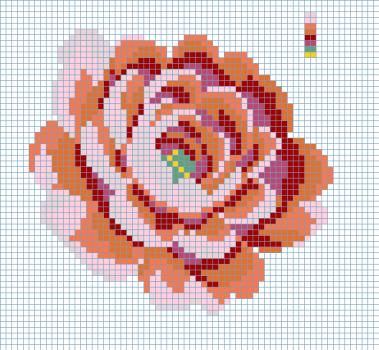 Rose 16238